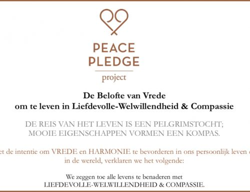 Peace Pledge Project